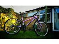 Arden mountain bike