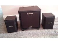 Roland Cube Monitor CM110 Main unit (Sub Woofer) and Two Satellitte speakers
