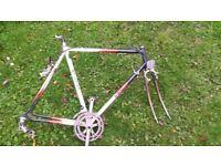 Vintage Reynolds racing bike project