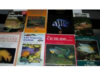 Aquarium chichlids ad Kongs plus others
