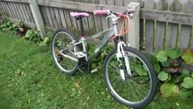 Girls custom aluminium mountain bike