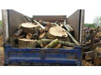 Unprocessed logs/cordwood/timber/firewood