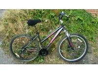Ladies aluminium frame bike