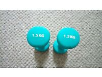 Set of 2x Turquoise Dumbbells 1.5 kg