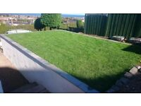Gardener, Lawns, Clearance, Tidying, Turf laying, Shed Building, Fencing, Walling.