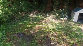 HANDYMAN/GARDENER REQUIRED A.S.A.P TO DIG UP A PATCH OF LAWN/IVY WEEDS AT THE BOTTOM OF MY GARDEN