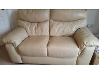 2 PIECE and 3 PIECE LEATHER SOFAS