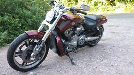 2009 HARLEY DAVIDSON VRSCF V ROD MUSCLE 1250cc
