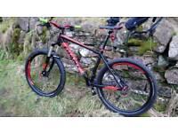 Giant talon mountain bike