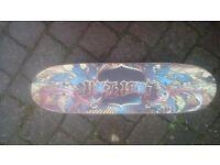 Skate board and balancing board