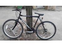 Arizona Crusader bike for sale
