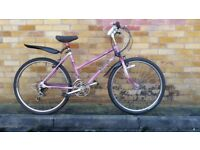 FULLY SERVICED RALEIGH MONTEREY BICYCLE