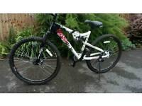 """Paradox 17"""" frame bike"""