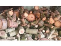 Logs for sale for wood burner fire etc