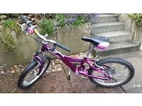 Girls bike. Would suits 6 - 8 year old.