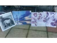 5 brand new prints still in wrapper