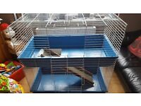 Two tier indoor dwarf rabbit /Guinea Pig cage