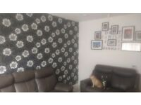 Looking to exchange from a 2 bed to a big 3 bed most areas considered x