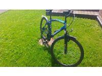 nice design blue reebok bike