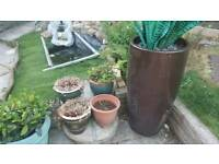 All pots, 2 Chimney Pots,2 owls and one water fountain all together £150