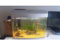 Aquastart 620 90 litre fully set up aquarium/fish tank/ tropical fish