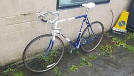 Raleigh Winner 1980s Road Bike