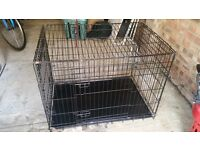 Black dog crate