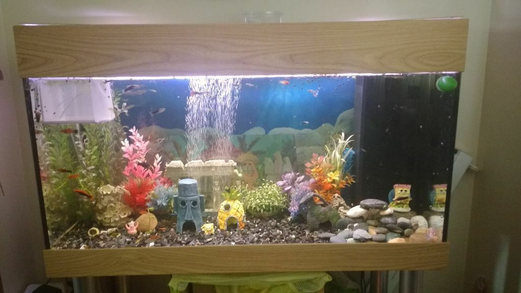 200l aquarium fish tank with stand light air pump large for Aquariums for sale near me