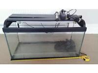 Fish Tank with Heater Pump Light's