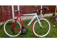 Adult,alloy. TEMAN SPEED 1000. Road/Race bike. Serviced ready to ride.