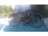 3 antique Raleigh bikes