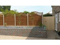 Garden Service( fencing, decking, tree cutting, garden cleaning)