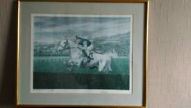 Limited edition desert orchid