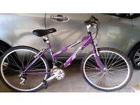 Raleigh Vixen Ladies mountain bike