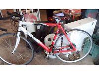 red & white racing bike (Boss)