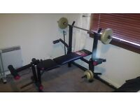 York 315 Weight Bench, York Lateral Tower Attachment & Weights