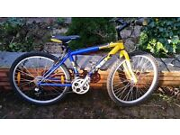 Trek 800 Sport cycle suitable for person aged 10-15 years
