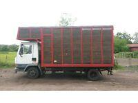 Leyland daf 7.5 ton horsebox