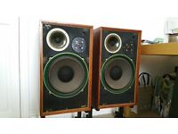 WARFEDALE DOVEDALE 3 + Matching stands - SOLID WOOD - Rare & Excellent Condition - TOP SOUND