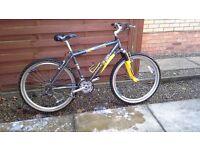 Ladies raleigh max mountain bike