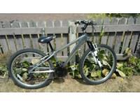 "Raleigh aluminium mountain bike 24"" wheels"