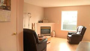 3 Bedroom – Fireplace, Pet Friendly, Basement. 1 Month FREE Edmonton Edmonton Area image 1