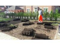 Leicester gardens maintenance