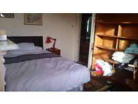 Room for rent in Central Exeter - £125 per week including bills