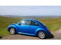 Volkswagen beetle. Lovely little car, well looked after