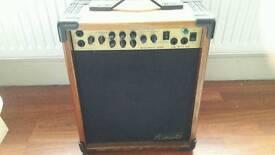 Vester vintage 30W guitar amplifier