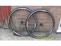 PR GIANT 700c RACING BIKE ALLOY WHEELS/TYRES /TUBES EXC COND DONE APPROX 100 MILES 8/9/10 SPEED