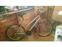 APOLLO XC26 LADIES BIKE