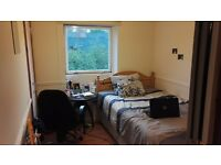 Room to Let in Edinburgh City Centre - Double room, £350pcm