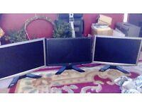 Triple pc gaming monitors
